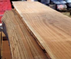 kayu lokal nangka
