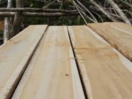kayu lokal sungkai