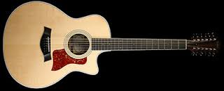 Taylor 456ce Fall Limited 12 string