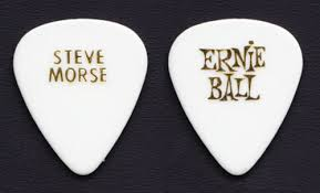 Deep Purple Steve Morse pick