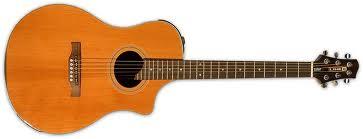 Line 6 Variax Acoustic